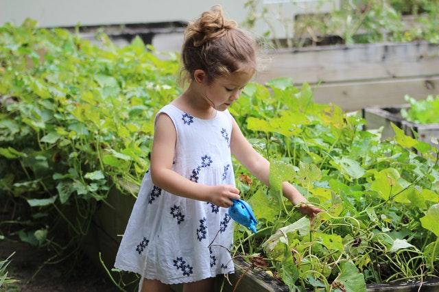 Jardiner avec les enfants