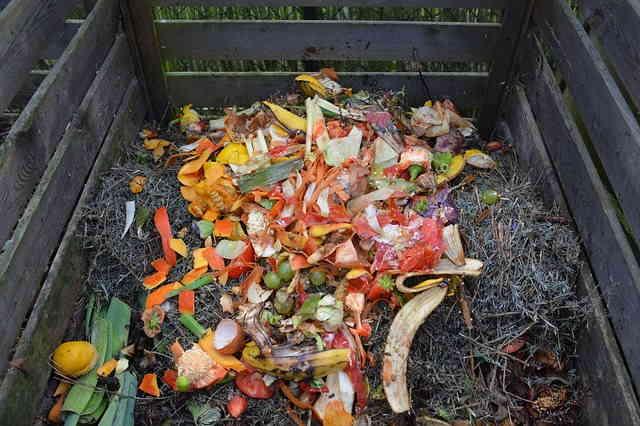 Compost indispensable au jardin écologique
